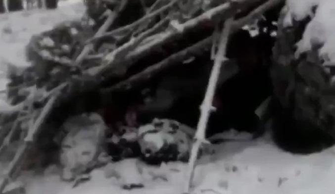 Virüsten kaçan Ruslar donarak öldü (Video Haber)