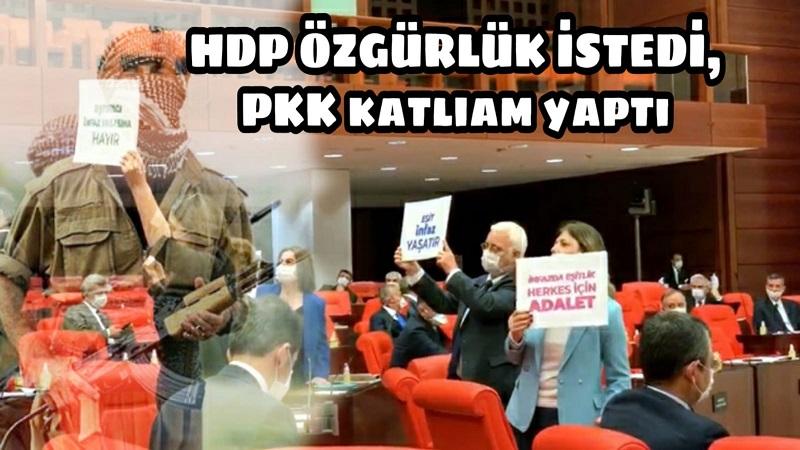 HDP özgürlük istedi PKK katliam yaptı
