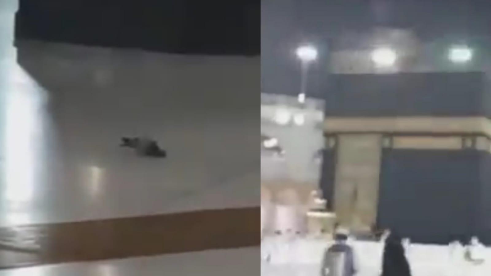 Kabe'nin avlusuna konan güvercinden şaşırtan secde hareketi (Video Haber)