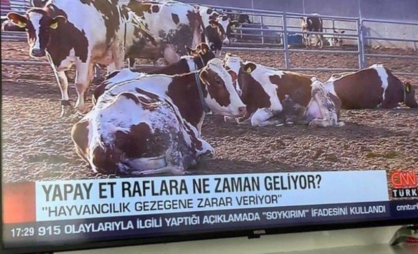 CNN Türk'ün 'yapay et' haberine vatandaşlardan tepki