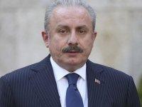Şentop: 15 Temmuz darbe girişimi Türkiye'ye yönelik dış destekli bir işgal hareketidir