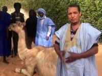 Ayasofya için deve kurban ettiler