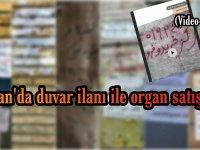 İran'da duvar ilanı ile organ satışı (Video Haber)