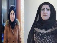 PKK Eşbaşkanı 2 kadın başları kesilerek öldürülmüş halde bulundu