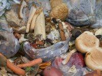 """""""Türkiye'de her yıl 7.7 milyon ton gıda çöpe gidiyor"""""""